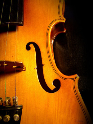friends of chamber music, violin, close up, flickr